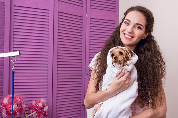 7 dicas para você montar um Banho e Tosa de um Centro de Estética Pet - Fourpet